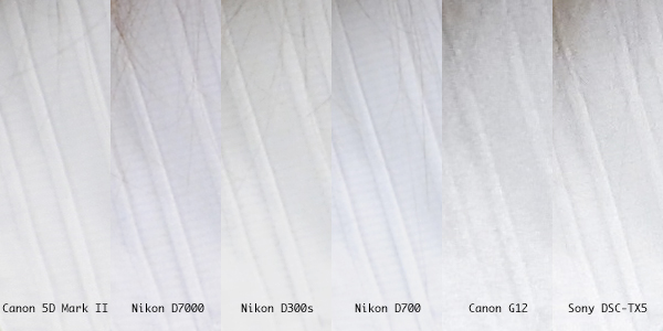 Nikon D7000 and Canon 5D Mark II comparison
