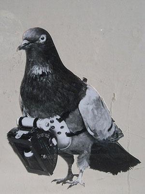 pigeon camera inventor